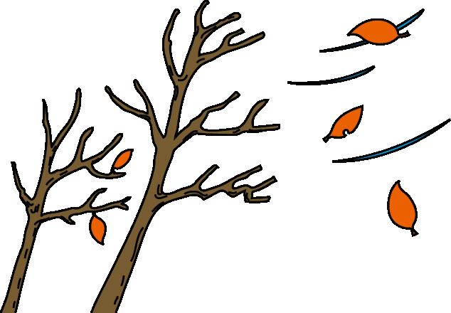 乾燥対策 | 保険ワールド【 姫路手柄店 / 姫路今宿店 / 姫路ヤマダストアー花田店 / 宍粟山崎店 】